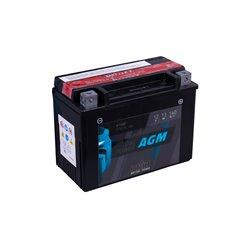 Accu AGM YTX15L-BS (met zuurpakket)